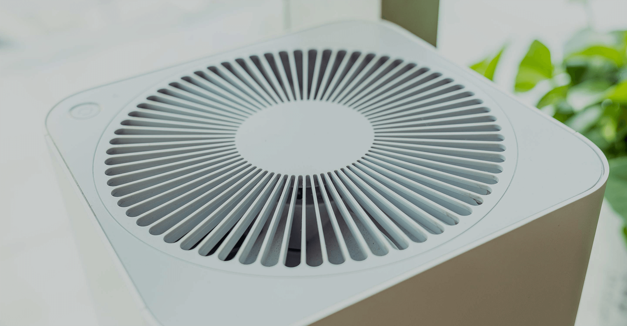 3 Myths about Air Purifiers that make you Look Dumb
