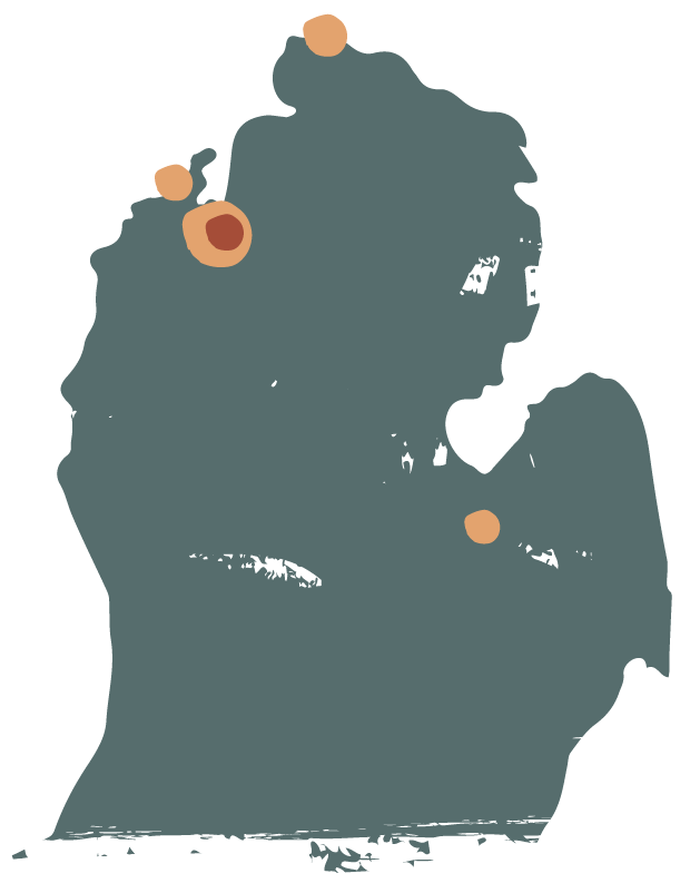 GTD MI Location map