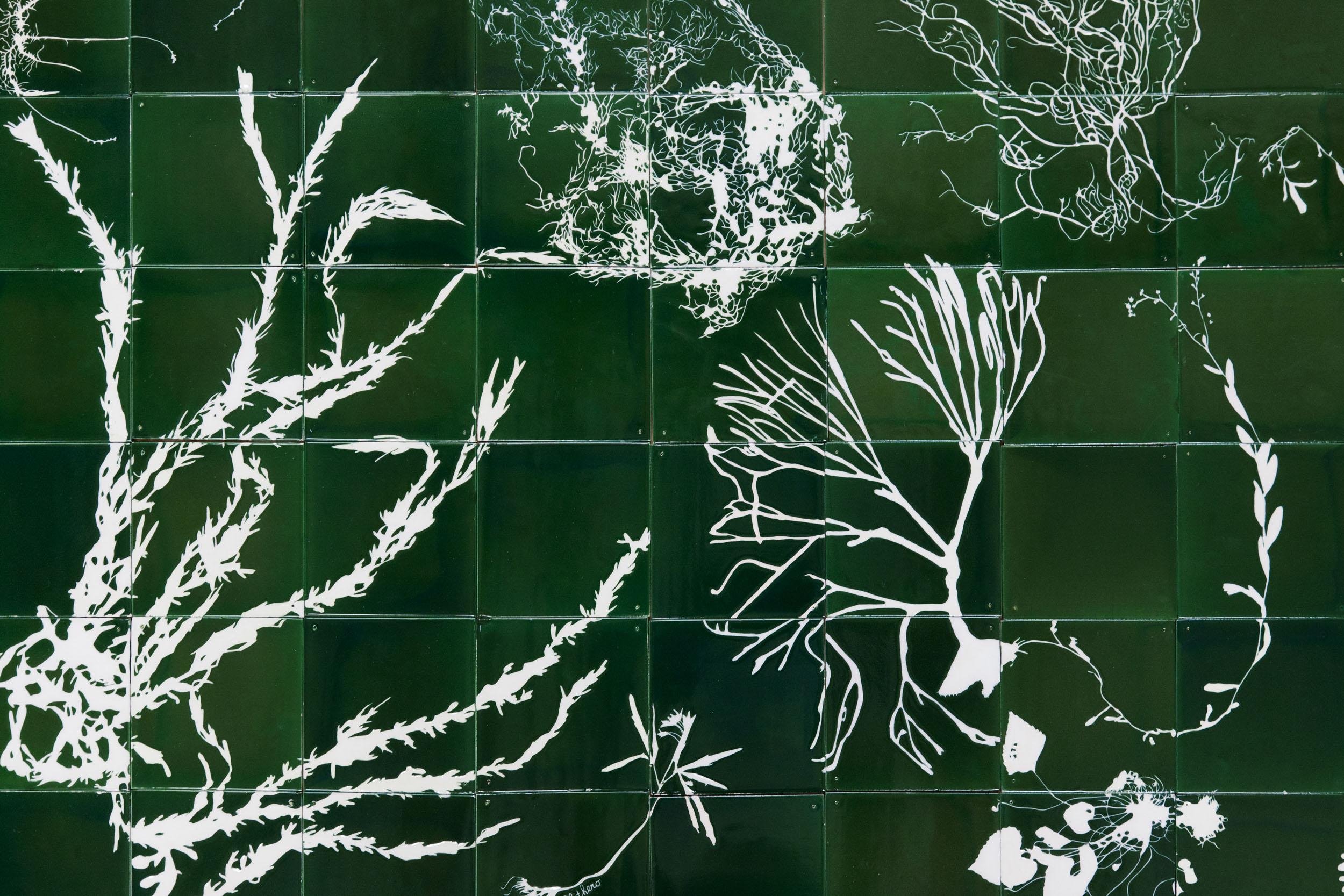 Green Botanical Tiles with sgraffito seaweed design