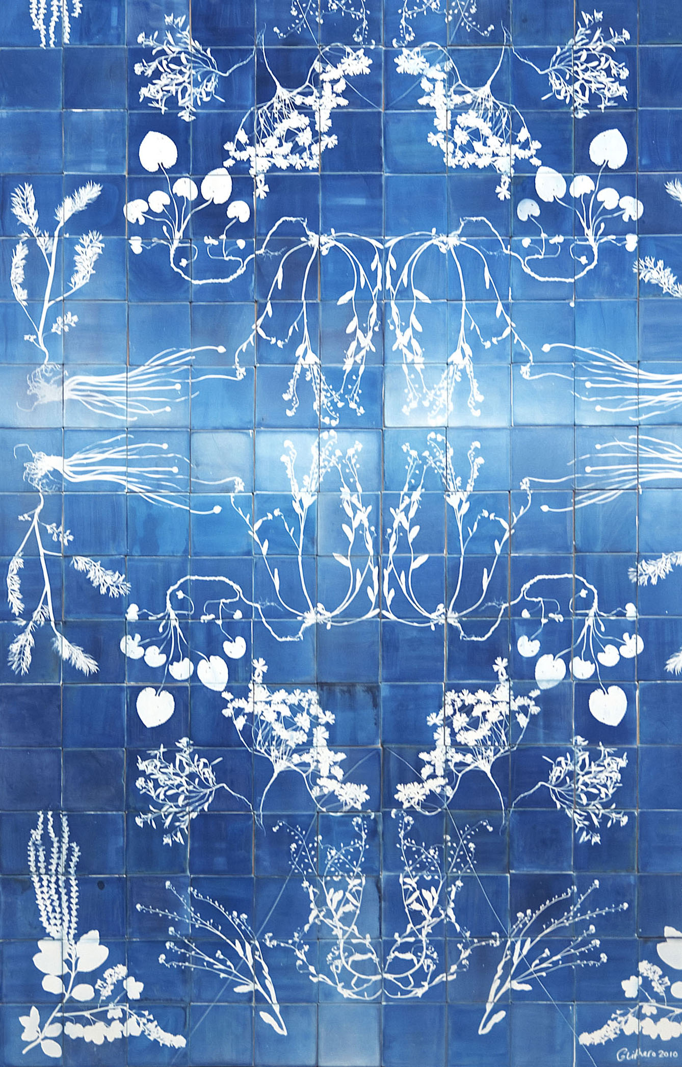 Blueware tiles are ceramic tiles with cyanotype photograms of foraged weeds. We select flora from our herbarium to make intricate composition that are then captured onto photosensitive tiles using light. Symmetrical patterns are made by flipping the weeds over and exposing them to light from the other side.