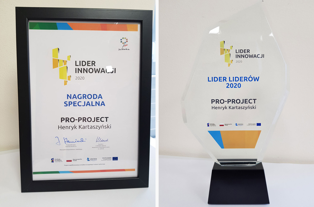 Leader of Leaders 2020 prize for Pro-Project - certyicate and glass statue.