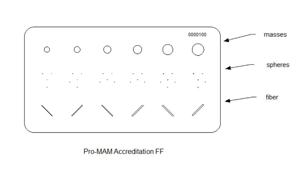 Pro-MAM Accreditation FF pattern