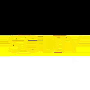 SGDIY logo