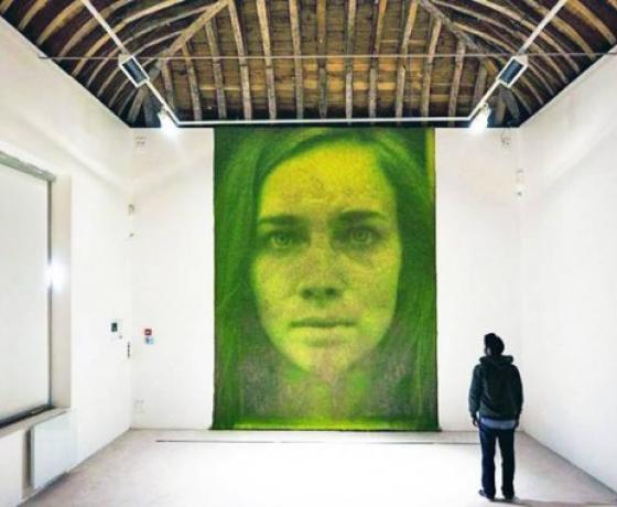 Британцы создают экологичные картины с помощью фотосинтеза