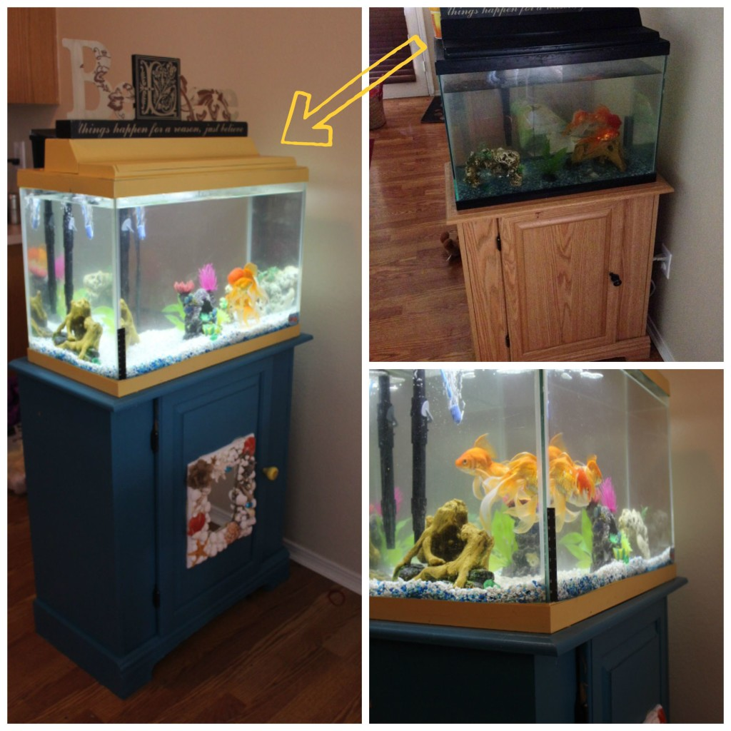 Before and After Fish Tank