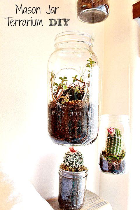 A Mason Jar Terrarium!!! 3 Easy Steps!