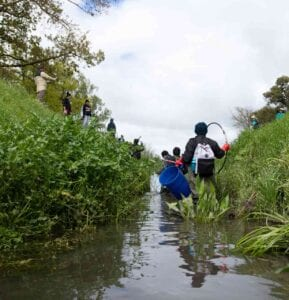 Palmerston North ELP centre learners help with the stream clean-up,