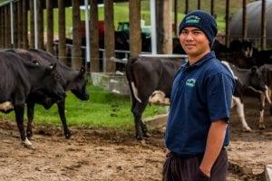 ELP student Johnrey at work on dairy farm