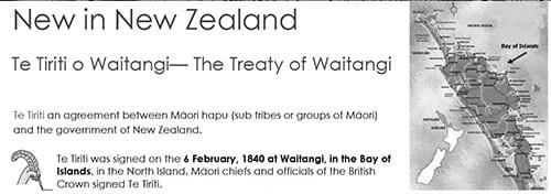 Treaty of Waitangi worksheet image