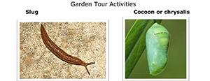 Garden tour activities worksheet