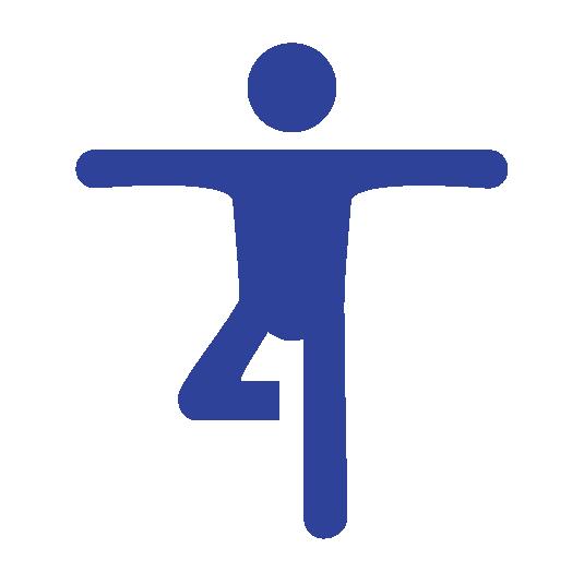 Physiotherapie Icon