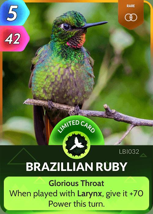 Brazillian Ruby