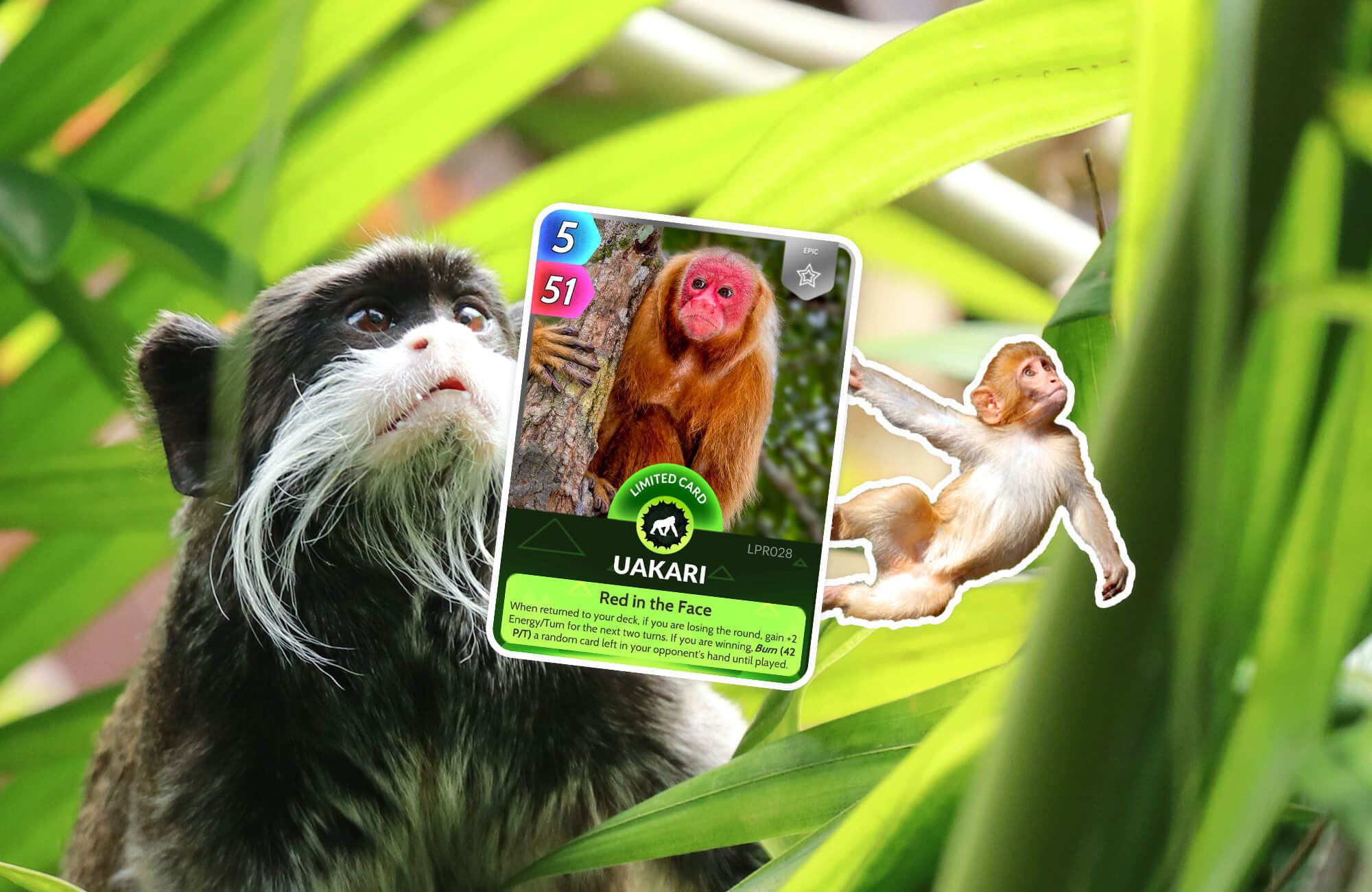 The new primates pack showing the Uakari card