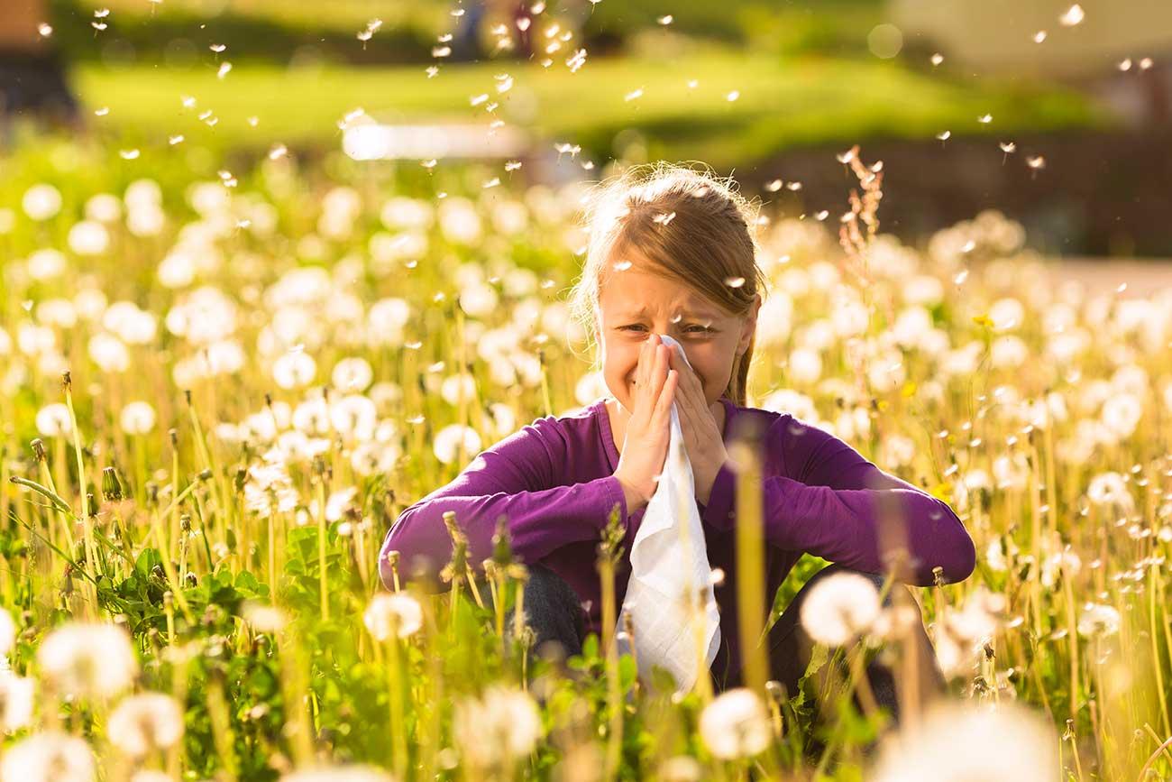 Das-Haus-vor-Pollen-schuetzen