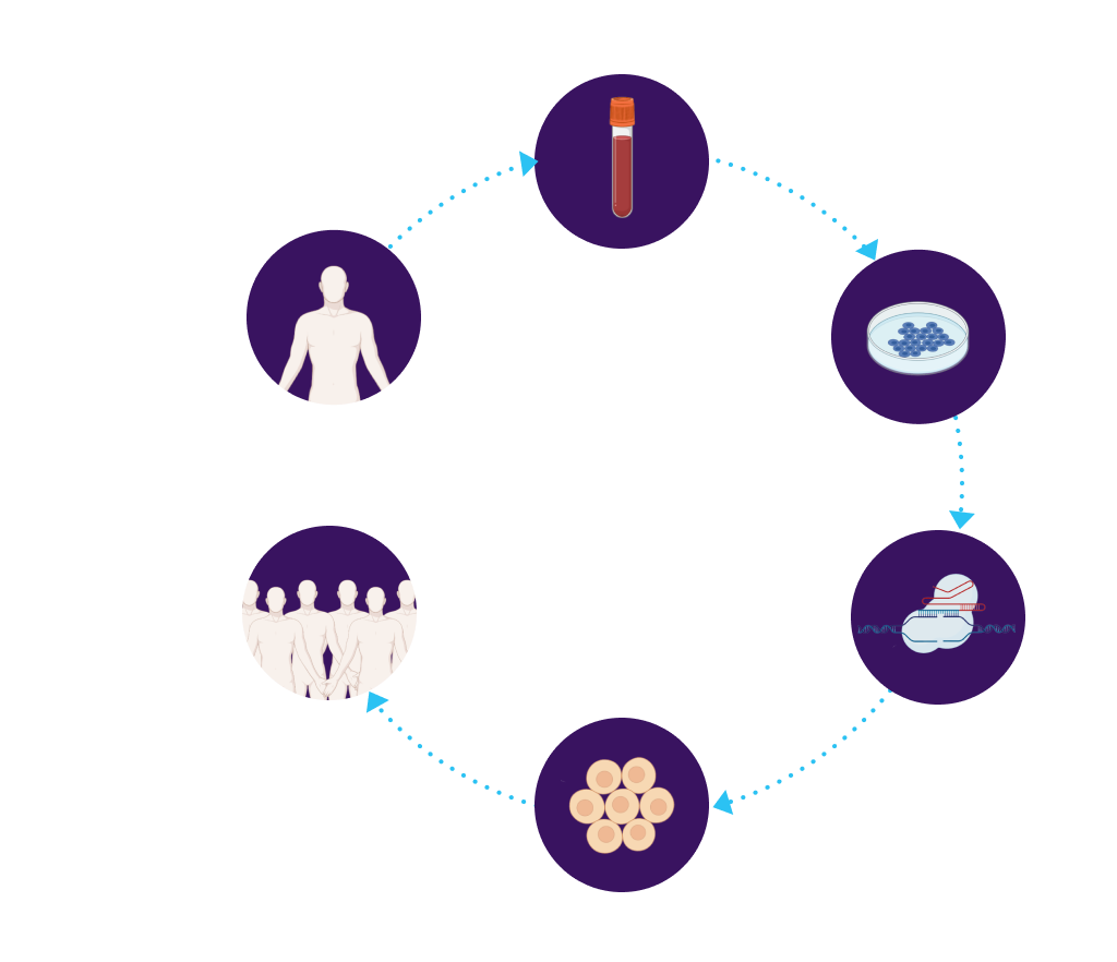 iPSCs drawn from donor, repaired, differentiated, used for all patients