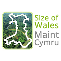 size of wales