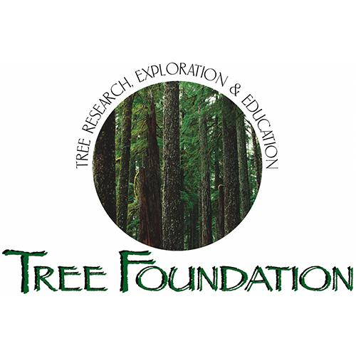 Tree Foundation