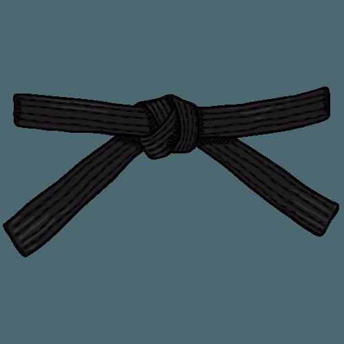 salesdojo.com Black belt
