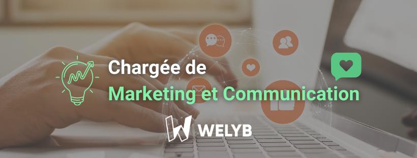Marketing Digital Welyb