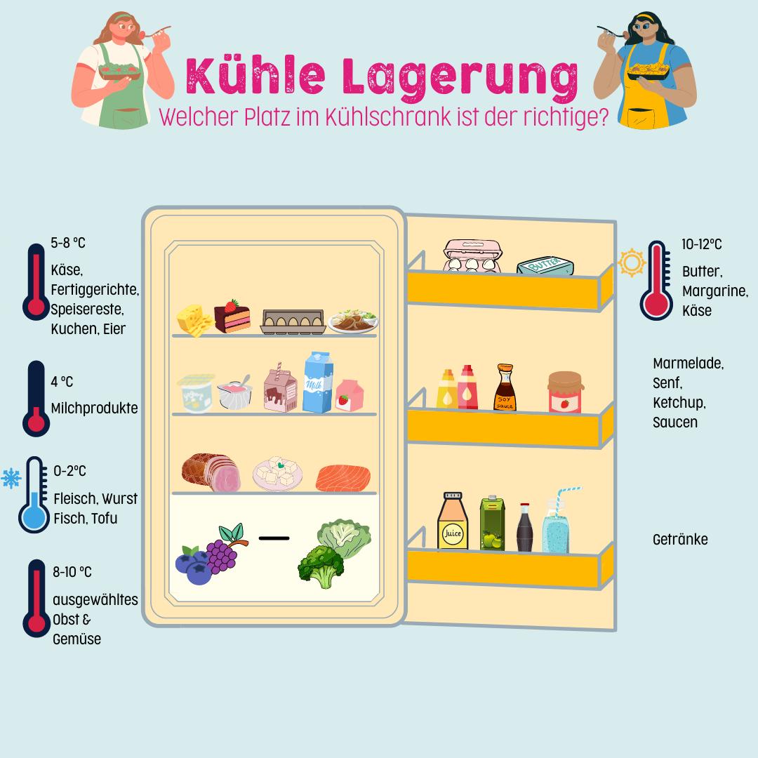 Welcher Platz im Kühlschrank ist der richtige?