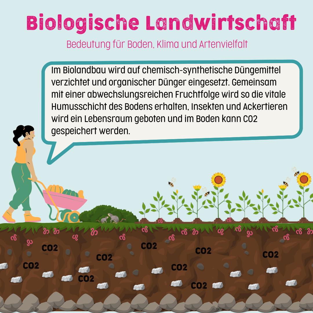 Warum unsere Böden Bio lieben!
