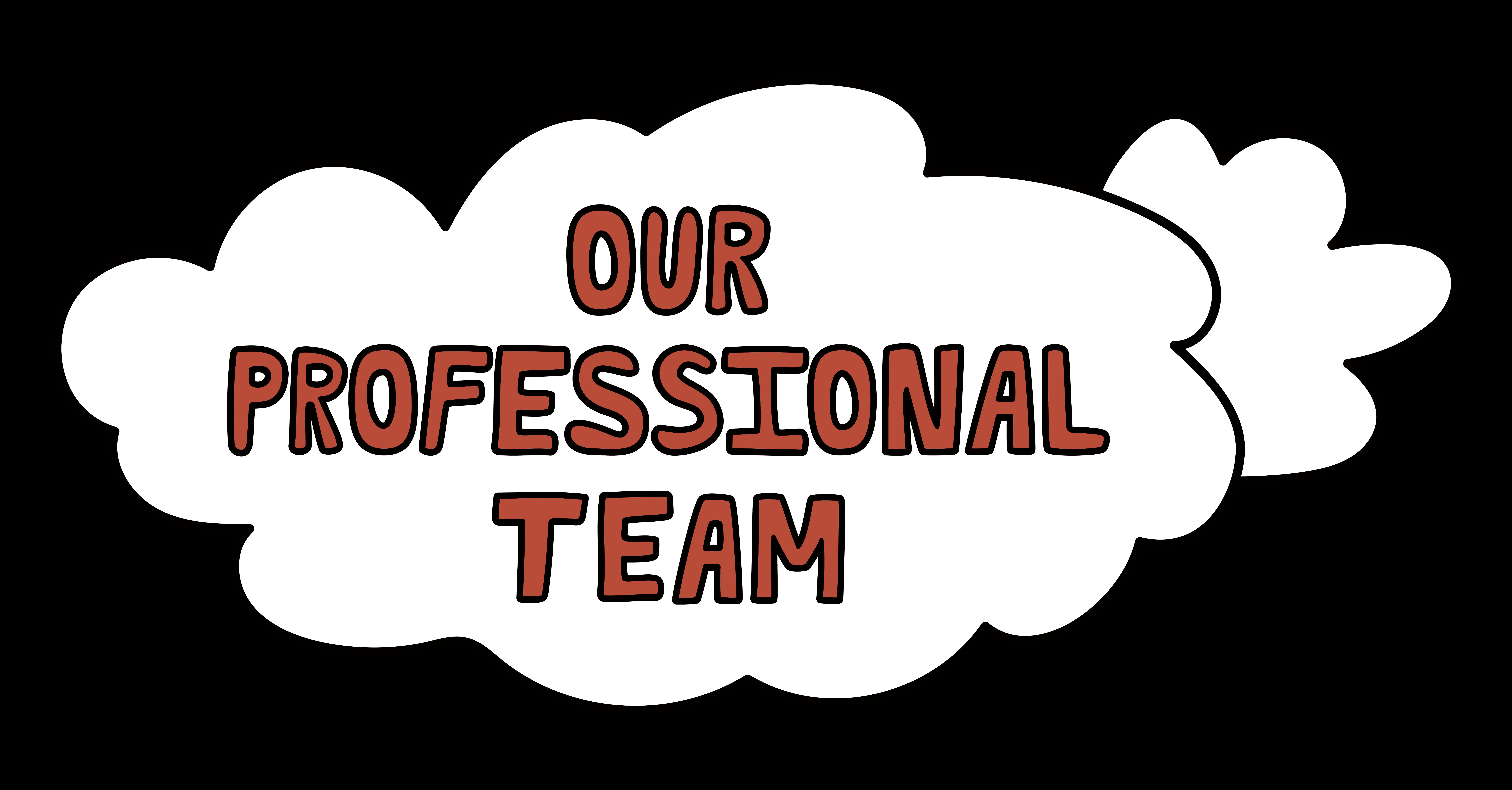 Our Professionals Team