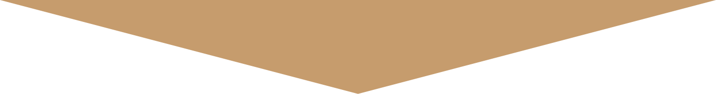 brown triangle