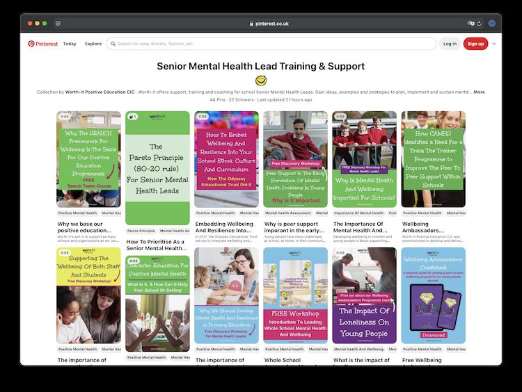 Senior Mental Health Lead Training & Support