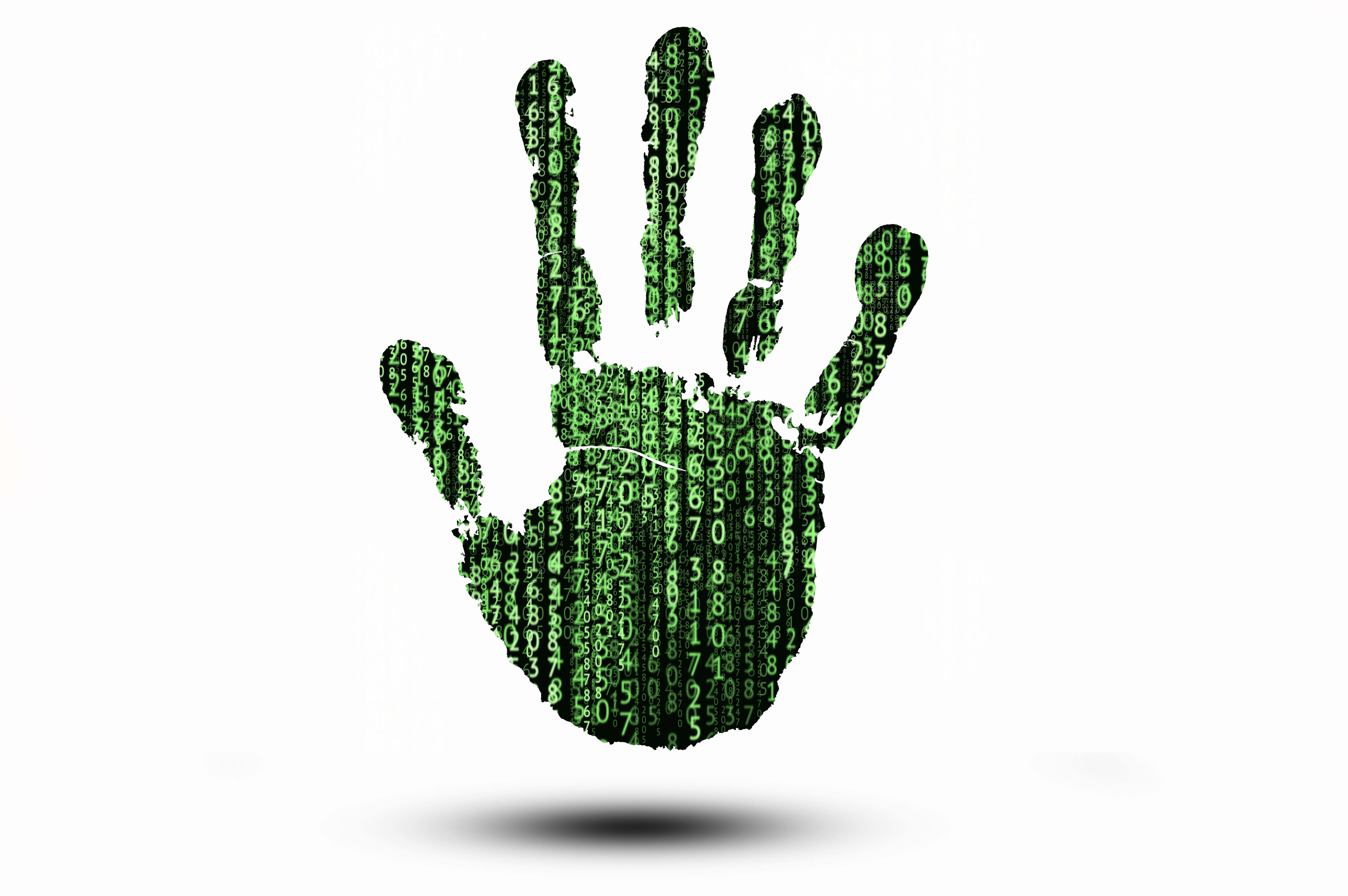 Biometric Hand with Binary Code