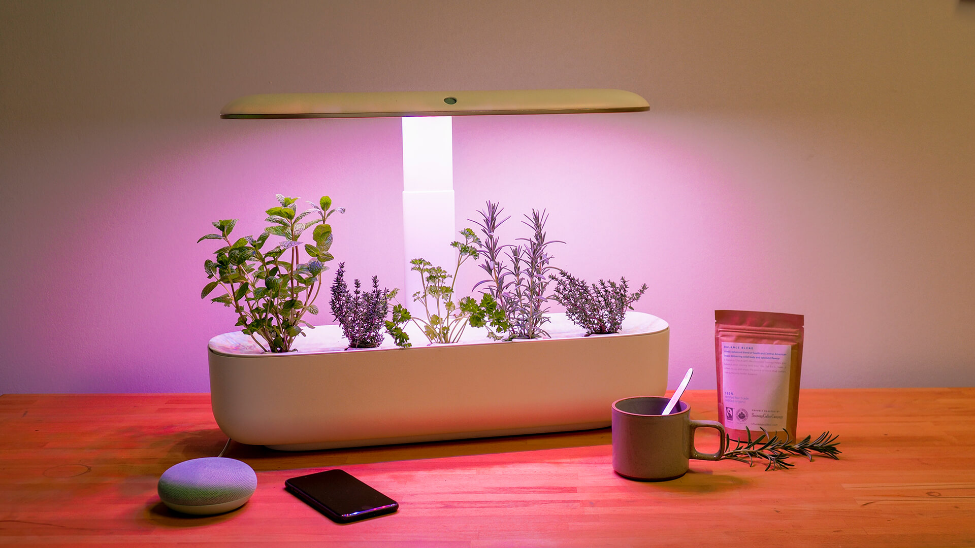 The AVA Smart Garden on a wooden countertop surrounded by a few smart devices, a short grey mug, and a small resealable bag of loose leaf tea. The AVA Smart Garden is lit purple and is growing an assortment of herbs.