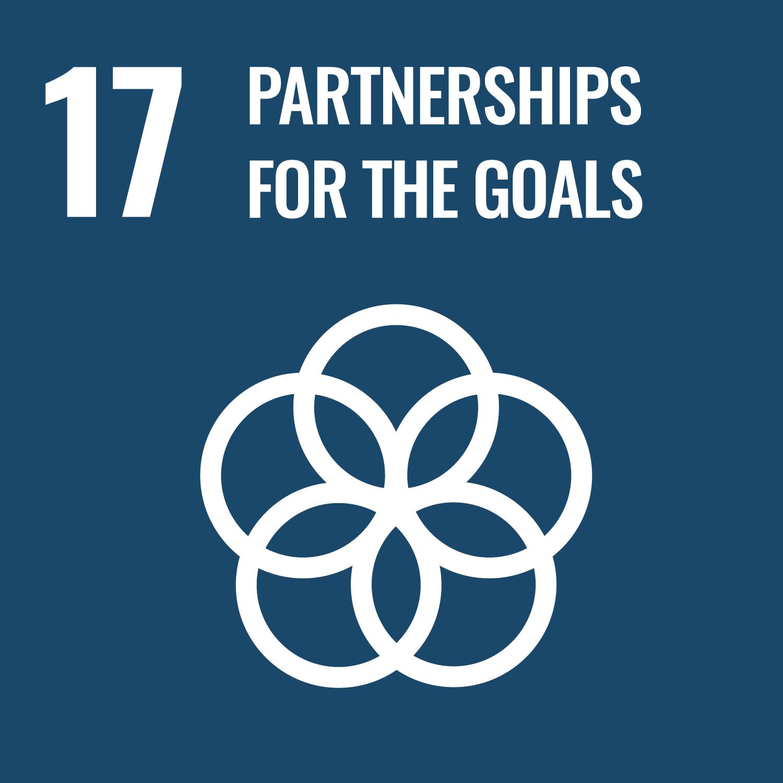 SDG 17 - Partnership for Goals