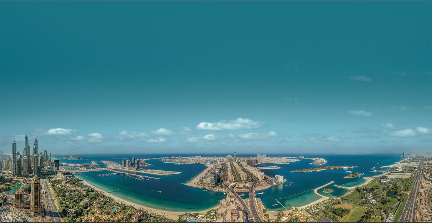Palm View Panorama