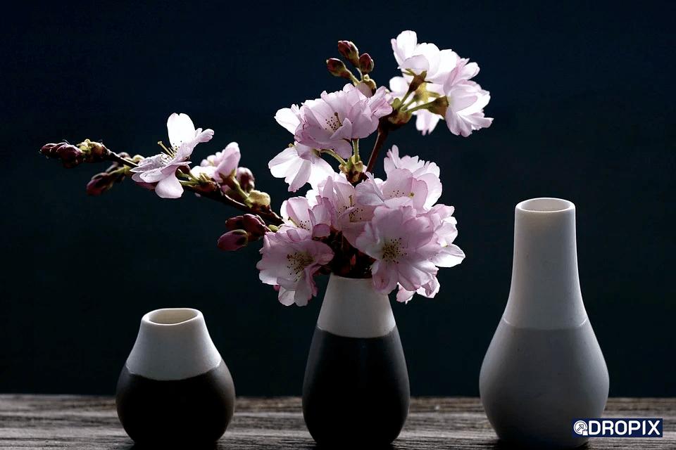 vase ecommerce dropshipping décoration dropix