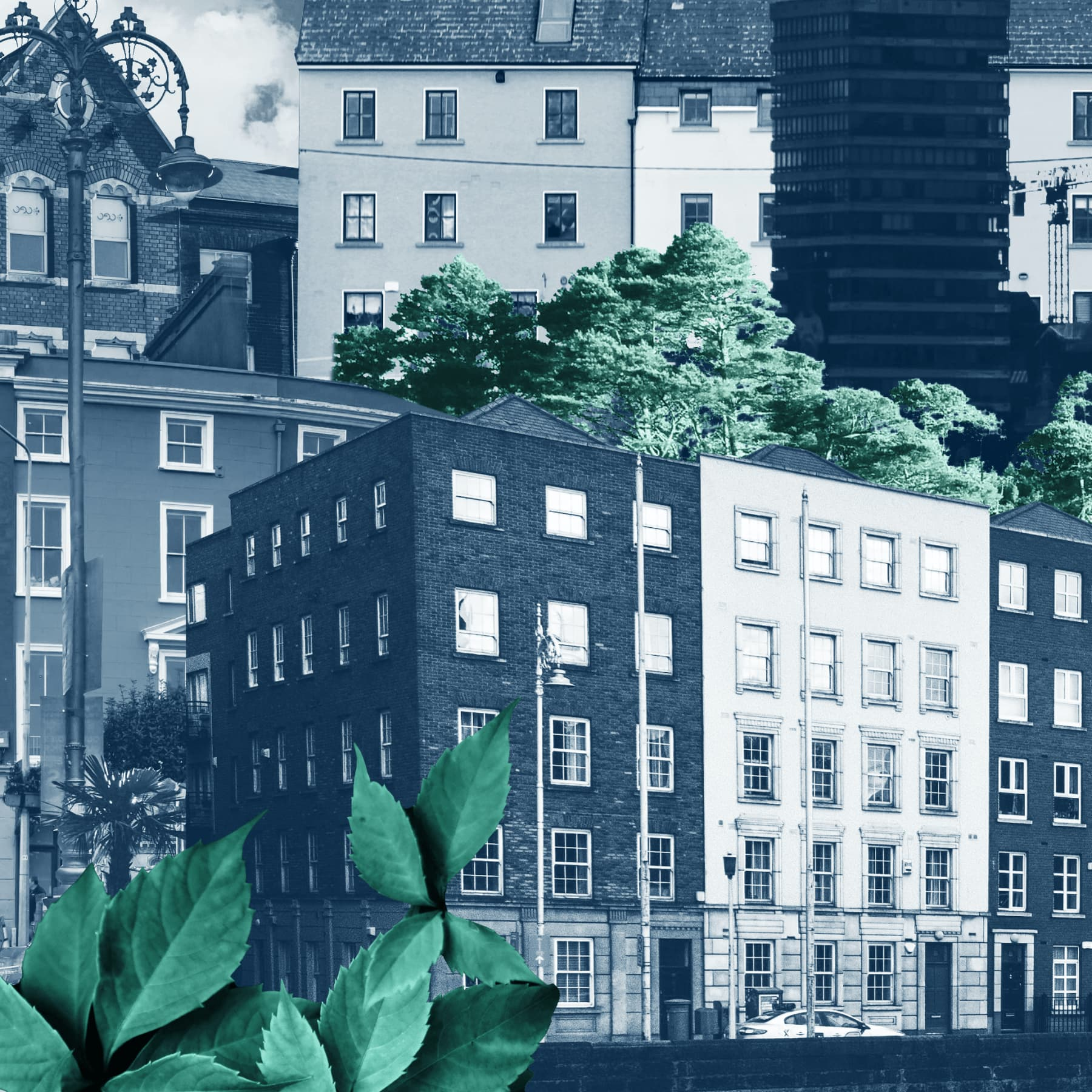 A city scape shot showing numerous building set against greenery in frankli's navy colour brand palette.