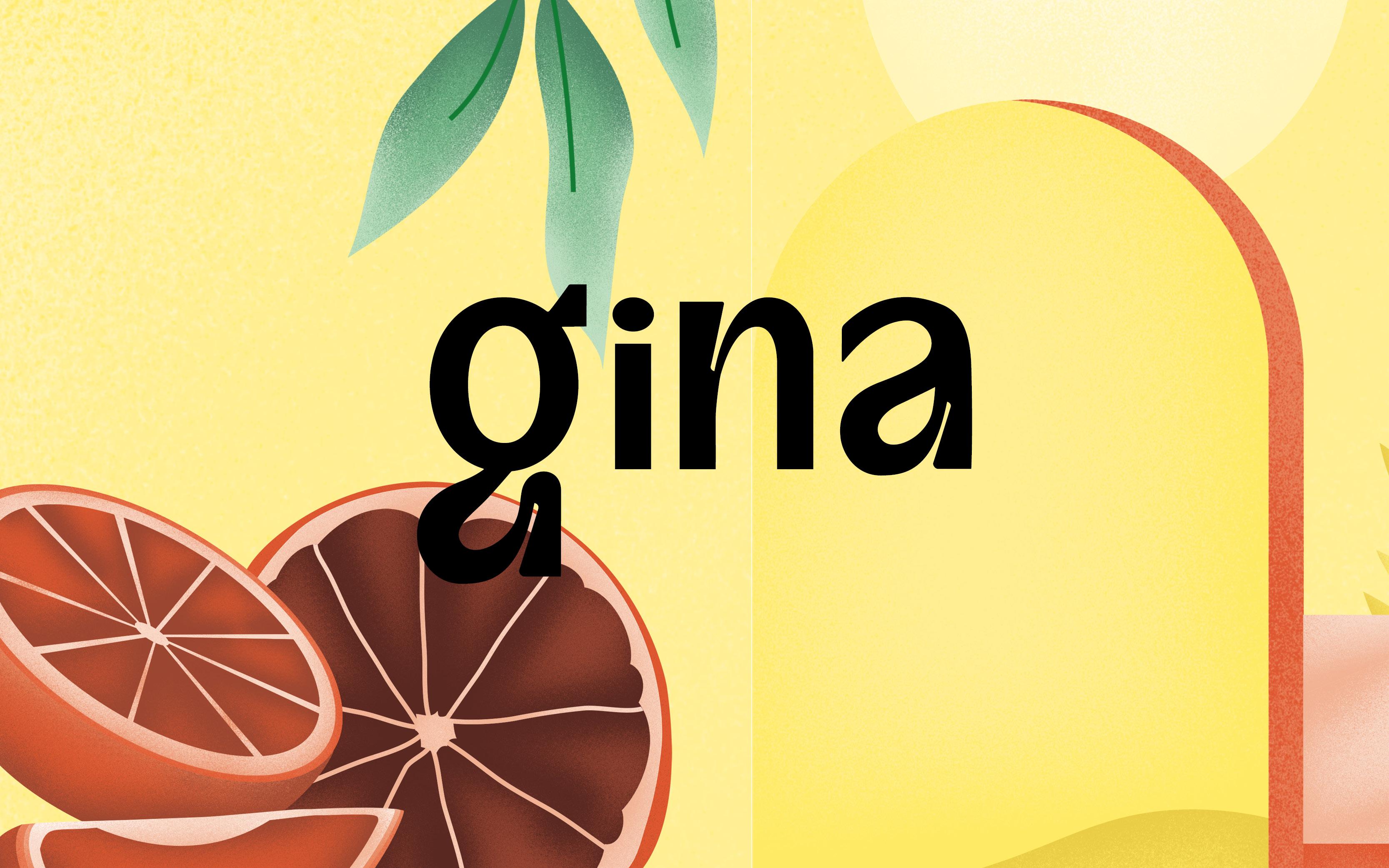 Gina identité visuelle boisson alcoolisée à base de Gin