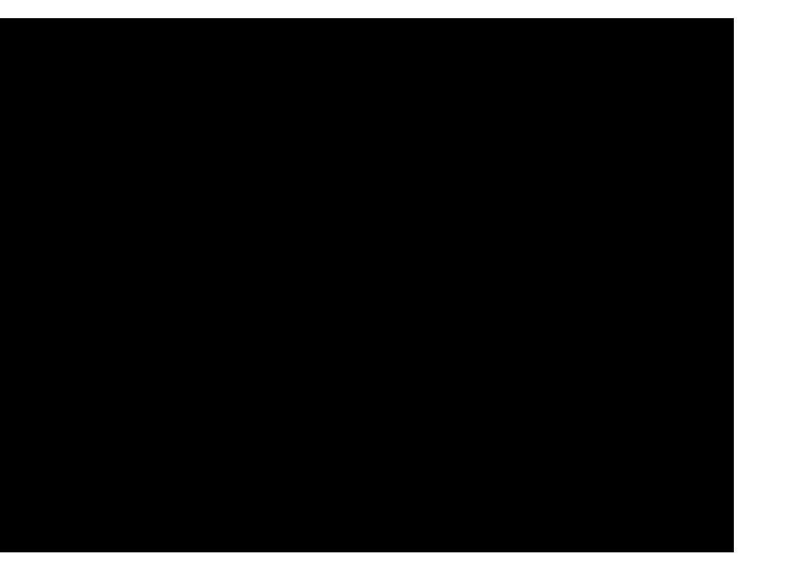 Bilo type specimen