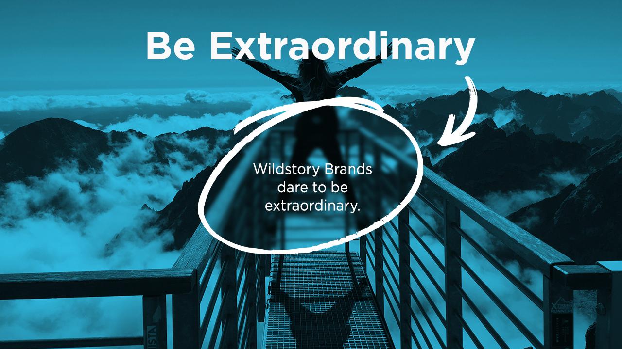 Wildstory Brands dare to be extraordinary.