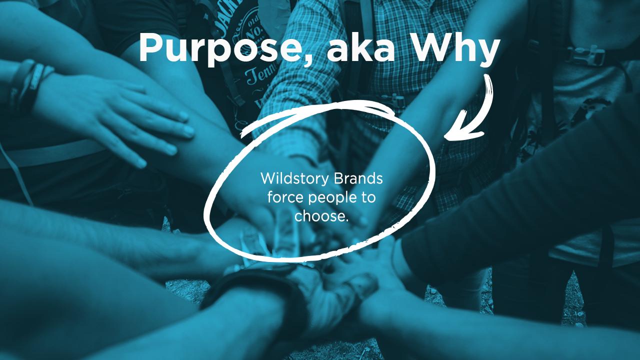 Wildstory Brands force people to choose.