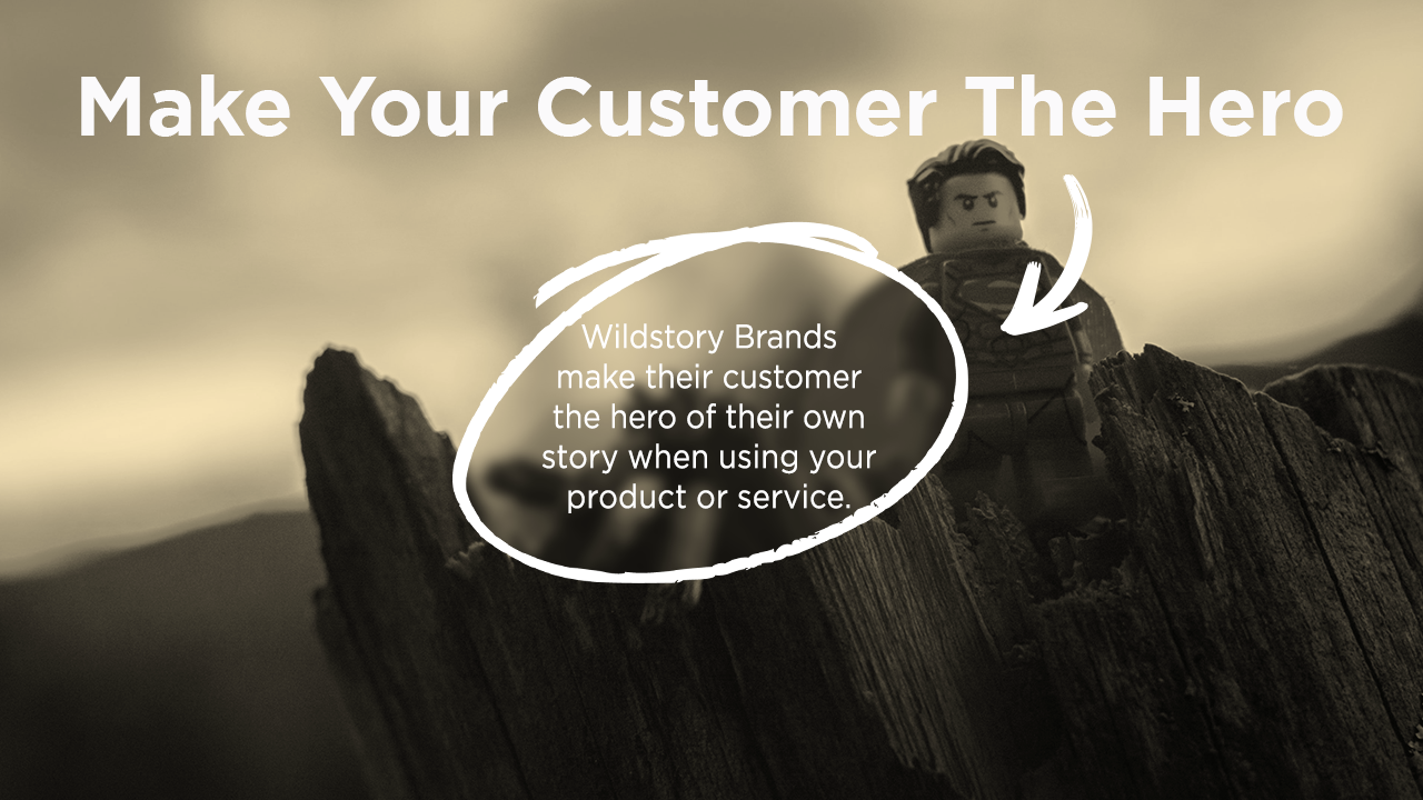 Wildstory Brands make their customer the hero of their own story when using your product or service.