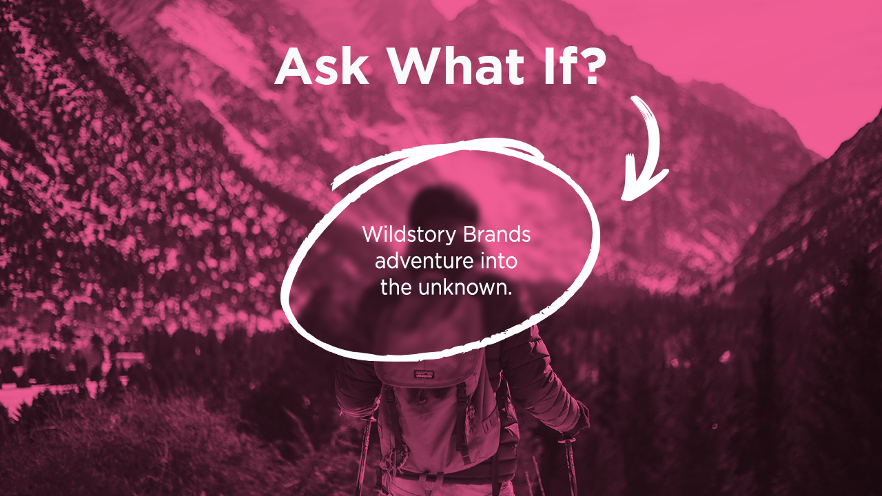 Wildstory Brands adventure into the unknown.
