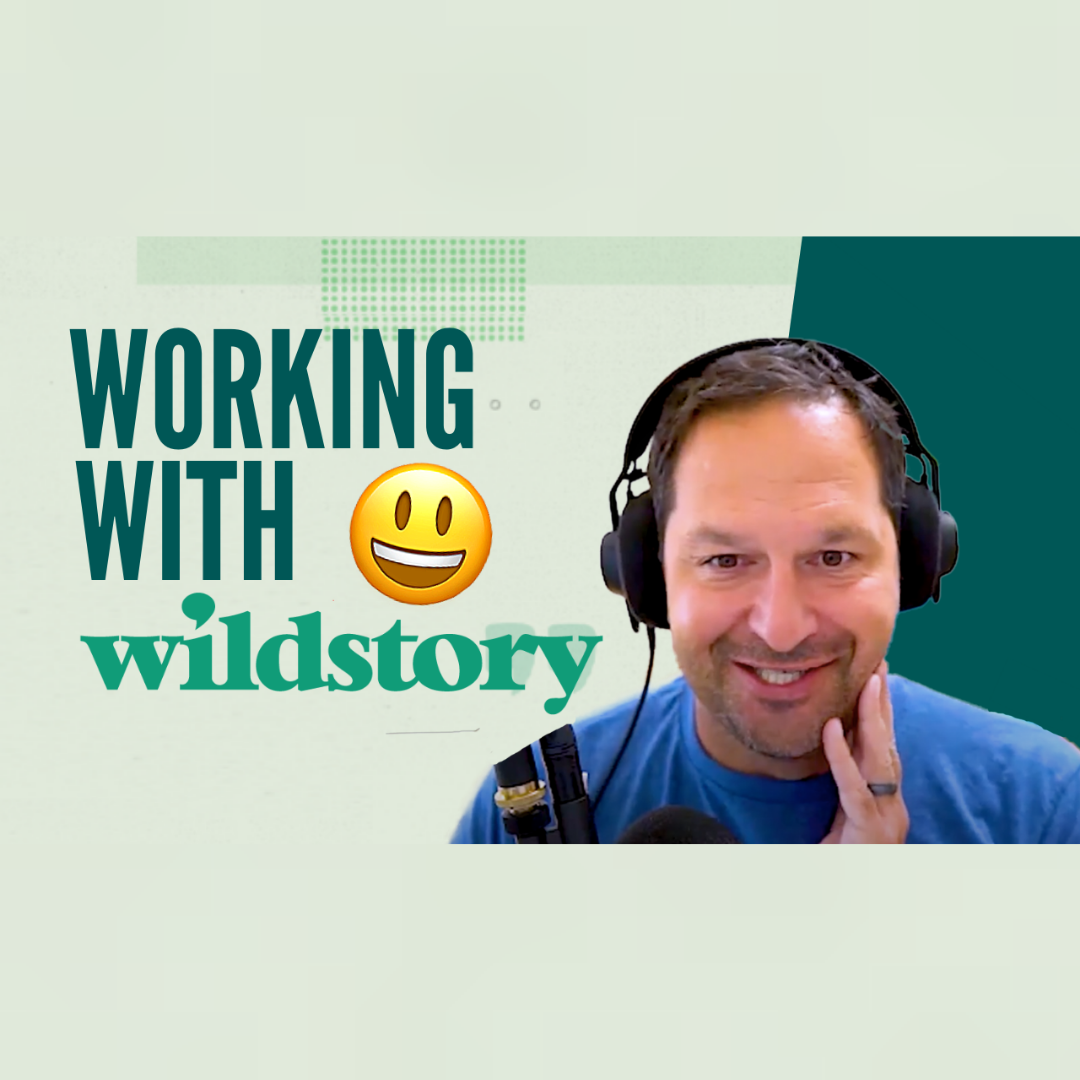 What Is the Process of Working With Wildstory