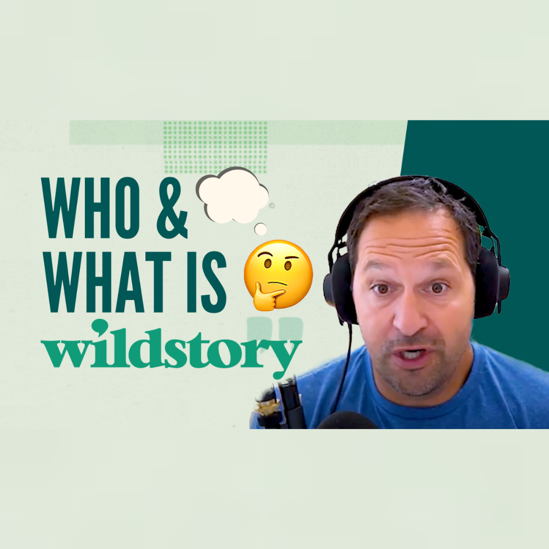 Who & What is Wildstory