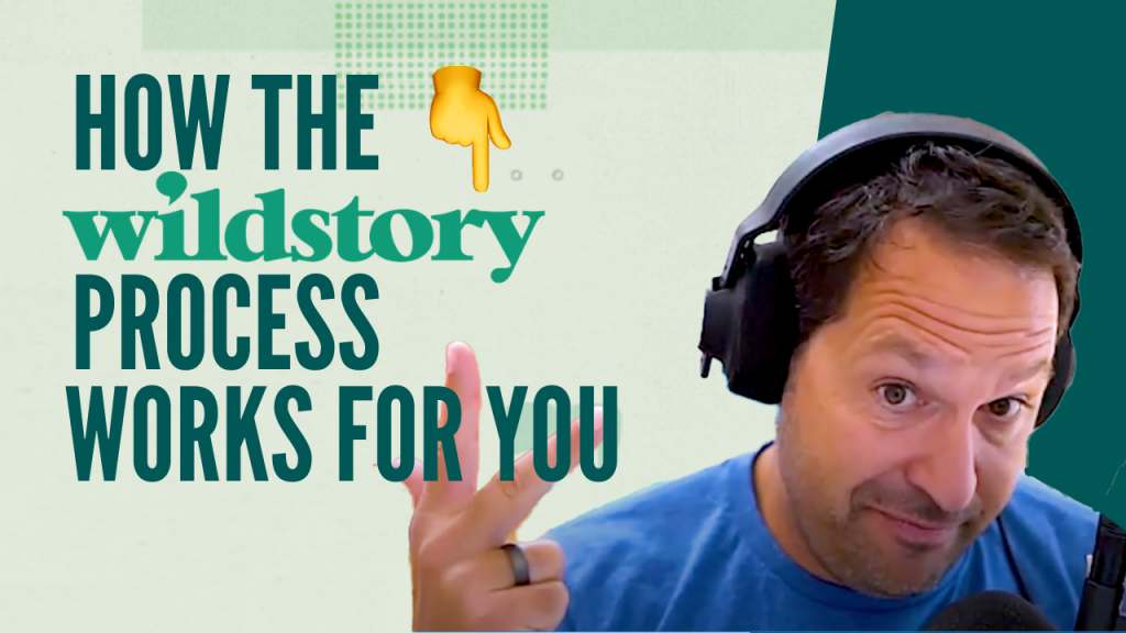 What Is the Wildstory Process and How Does It Work for YOU?