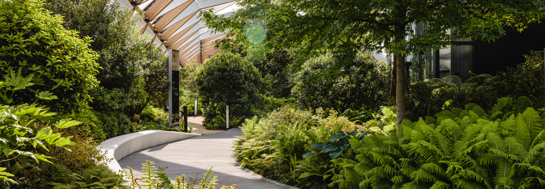 Cross Rail Roof Garden