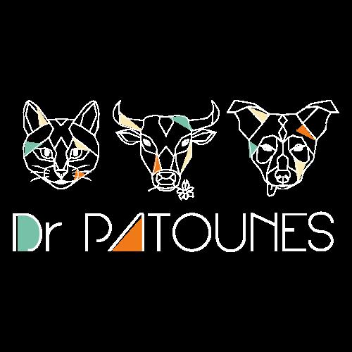 Logo Dr Patounes