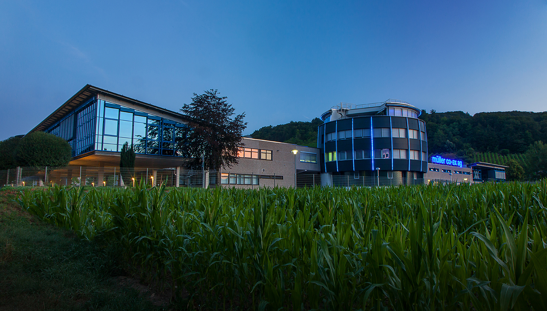 Firmengebäudeteile mit großer Glasfront, hinter einem Maisfeld gelegen.
