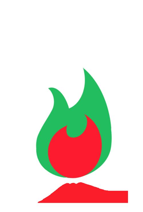 The McCarney Foundation Logo