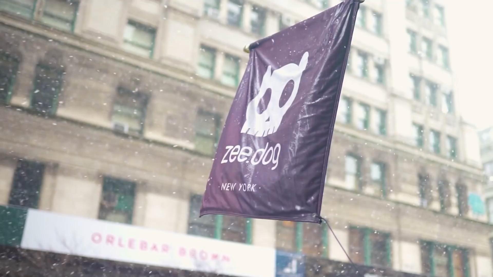 Foto com destaque da bandeira da marca zee.dog na cidade de Nova York, NY.