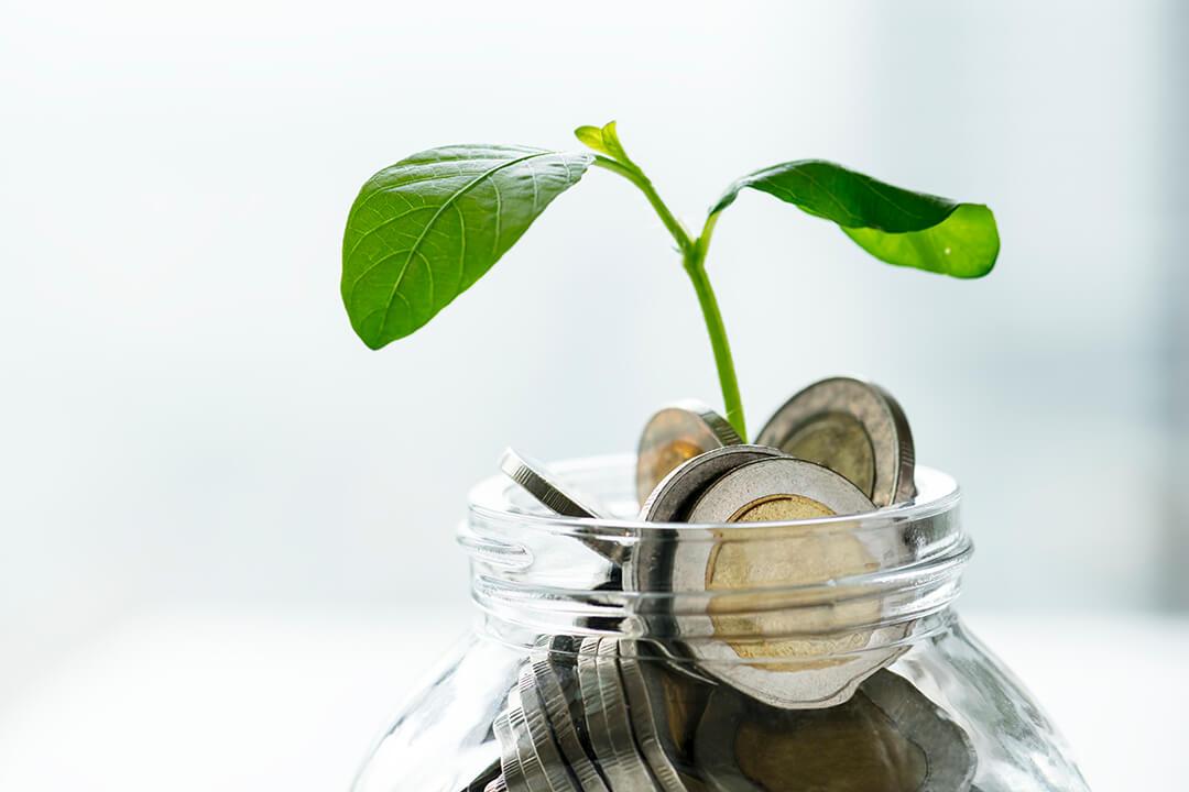 Uma série de parâmetros a serem seguidos pelos gestores quanto à escolha das empresas que farão parte de seu portfólio de investimento.