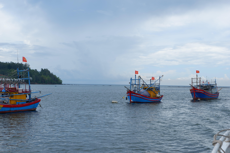 Sa Ky estuary, where boats of Quang Ngai fishermen pass before going to the South China Sea, Photo / Vo Kieu Bao Uyen